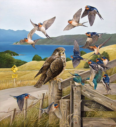 craig platt nz native bird artist